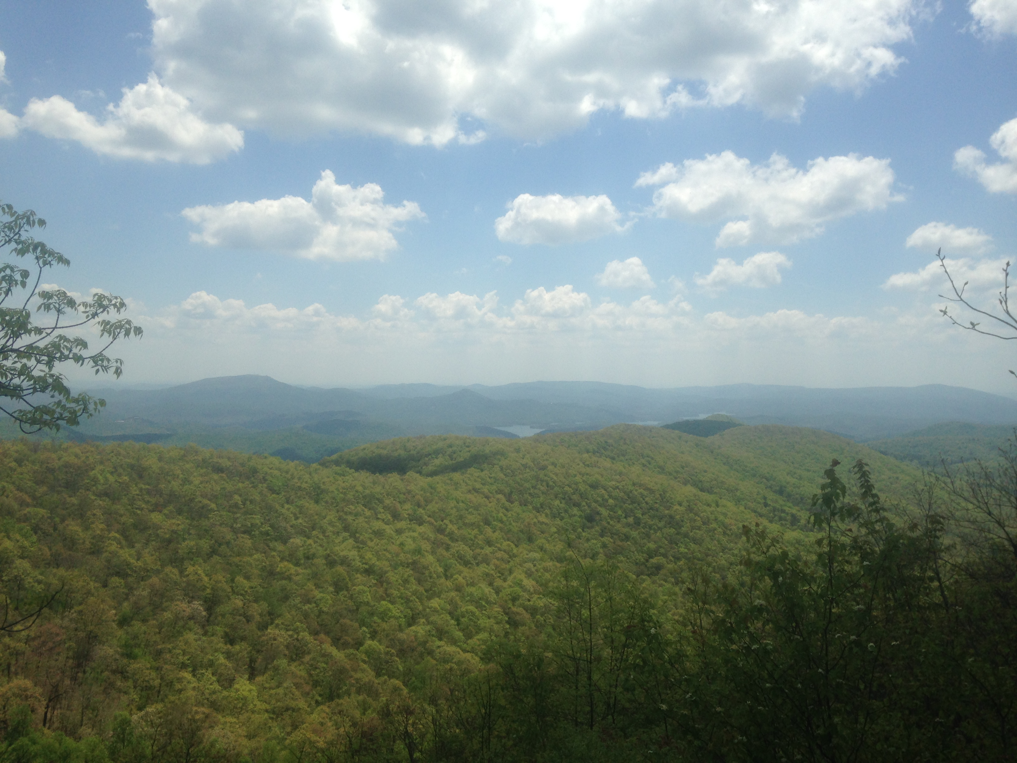 Powell Mountain Vista, GA